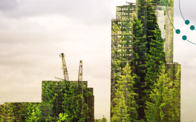 First global survey of green banks finds rapid growth in their numbers and importance in low carbon finance